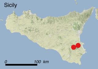 Location of Zelkova sicula